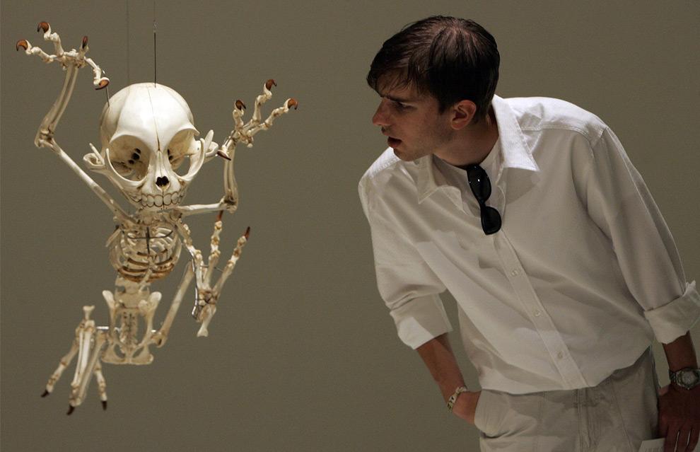 """Посетитель смотрит на макет скелета Тома из мультфильма """"Том и Джерри"""". Специальная выставка """"Animatus"""" прошла в Музее Естественной Истории Базеля, Швейцария. 26 августа 2008 год. REUTERS/Stefan Wermuth"""
