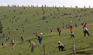 Воины Maasai рассредаточились по области сражения, столкновение со стрелками племени Kalenjin на холме Kapune. 1 мая 2008 год. Yasuyoshi Chiba/AFP/Getty Images